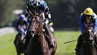 """Großer Preis von Baden lockt internationale Pferde-Elite nach Iffezheim - Sieger erhält Einladungen zu """"Breeders' Cup Turf und Japan Cup"""""""