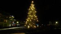 Neuer Weihnachtsbaumstandort in Oberbeuern