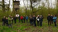 Rastatt setzt auf klimastabile Baumarten - Eschenbestand im Stadtwald Rastatt hat sich mehr als halbiert