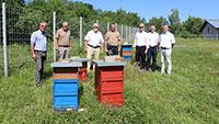 Freiburger Energieversorger investiert in Bienenvölker - Sponsoring- und Partnerprojekt mit heimischen Imkern