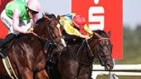 Start mit 10 Pferden in die Große Woche – Hickst-Großangriff auf 65. Preis der Sparkassen Finanzgruppe