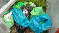 Stadtklinik Baden-Baden droht handfester Umweltskandal - Stadtrat Jürgen Louis entdeckte 360 Flaschen illegal entsorgter Medikamente