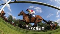 Galopprennen in Iffezheim wird internationaler - Beim Großen Preis 26 von 42 Anmeldungen aus dem Ausland