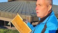 Bienen-Invasion in Rastatt – 20.000 Bienen auf dem Dach der Badner Halle