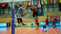 Volleyball-Bundesligisten Bisons reisen an den Ammersee – Nach dem Pokal ist vor der Liga
