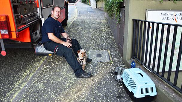Feuerwehr rettete Hund in der Vincentigarage - Wärmestau und zu klein geöffneter Fensterschlitz
