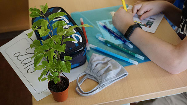 Auch Pädagogium begrüßt neue Schüler – Pflänzchen zum Schulstart