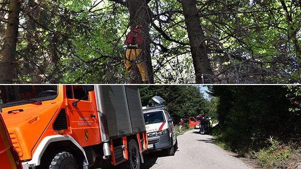Gleitschirmflieger am Baden-Badener Merkur abgestürzt – Pilot von Feuerwehr aus Baumwipfel befreit