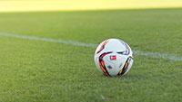 Die Bundesliga neigt sich dem Ende zu – Kaum Hoffnung auf ein spannendes Finale – Das ist der aktuelle Stand