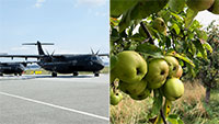 Flug von Baden-Baden nach Berlin mit gesunden Säften – Green Airlines mit naturbelassenen Getränken von Brandenburgern Streuobstwiese