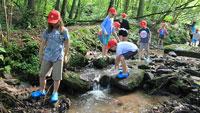 Gaggenauer Kulturbüro plant Ferienspaß – Programmpartner gesucht