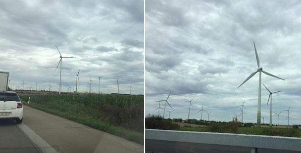"""Leserbrief """"Meine Meinung"""" – """"Die grüne Partei, die den Wald als Sauerstoffspender propagierte, befürworten das Fällen von Bäumen für die Errichtung von Windparks"""""""