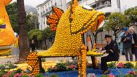 Umzug mit Zitronen und Orangen in Menton - Baden-Badener beim Zitronenfest