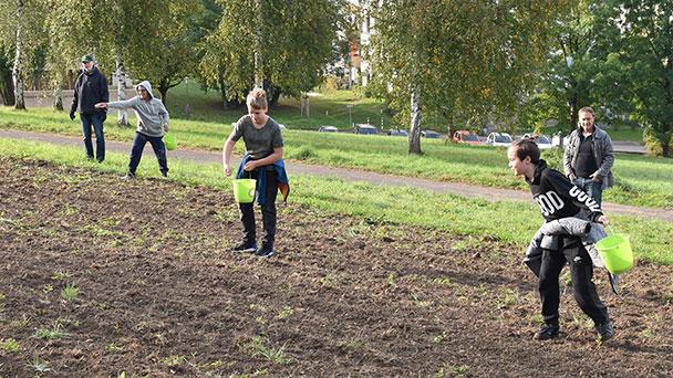 RWG-Schüler säen Blütenwiese: Nahrung und Lebensraum für Insekten im Draseiert Park