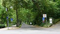 """""""Fahrradallee"""" in Baden-Baden vom Bahnhof nach Geroldsau – Antrag der Grünen nach Aufruf des Bundesumweltministers"""