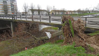 """Sturm """"Sabine""""– """"Glimpflich davon gekommen"""" – Dennoch Vorsicht geboten in Grünanlagen und im Wald"""