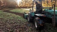 Gaggenau bereitet sich schon auf Frühling vor – Wildblumen und Kräuter im Kurpark Bad Rotenfels