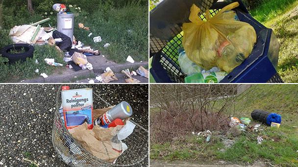 """Unsolidarisches Verhalten lockt Ratten an – """"Eigene Müllgebühren auf Kosten der Allgemeinheit"""""""