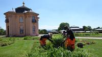 Barockstadt Rastatt mit über 30.000 Pflanzen geschmückt