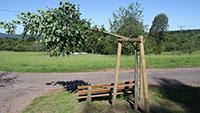 Zerstörungswut in Gaggenau und Sulzbach - Baum und Sitzbank zerstört