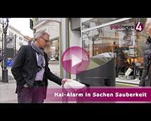 Besondere Art von Hai soll Baden-Baden sauber machen | Alexander Uhlig