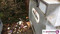 Mängelmelder gegen Schmutz in Baden-Baden – Wilde Müllablagerung, verschmutzte Altglasplätze überquellende Papierkörbe