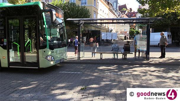 """""""Wie ein Hobbit in einer grasbedeckten Höhle auf meinen Bus warten?""""- SPD-Kritik am Vorschlag der Grünen für begrünte Buswartehäuschen"""