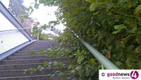 Rathaus mahnt: Gehweg und Straße von Pflanzen freihalten