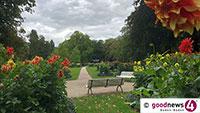 Romantischer Einkauf in der Lichentaler Allee – Knollen- und Blüten im Dahliengarten