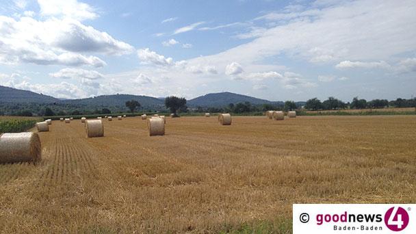 Neue PFC-Auswertung – Weitere 114 Hektar in Rastatt verunreinigt – Keine neuen Untersuchungen in Baden-Baden