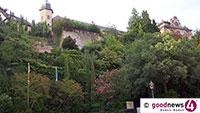 Pinien und Palmen in Baden-Baden – Nächste Botanische Führung am Mittwoch