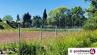 Weitere Öffnungen für den Sport – Kontaktarmer Amateur- und Freizeitsport mit bis zu 20 Aktiven auch in Baden-Baden gestattet
