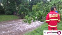 Glimpfliche Hochwasser-Bilanz in Baden-Baden - Überflutung in Baden-Oos - Baum stürzte quer über die Oos auf Lichtentaler Allee