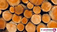 Holz vor dem Haus in Bühl – Stadtverwaltung kümmert sich um einen warmen Winter