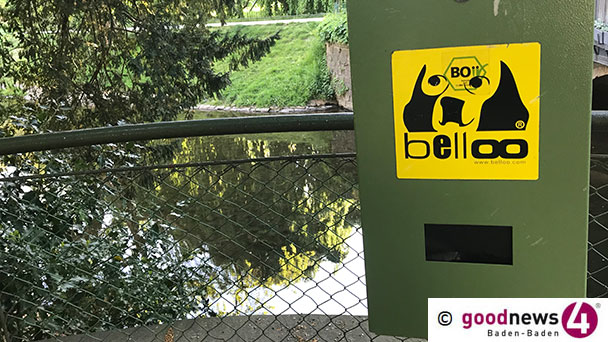 """Ärger wegen Hundekot in Bühl – Rustikale Empfehlung aus dem Rathaus: """"Tüte überstülpen, Haufen aufnehmen"""""""
