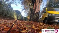 Ganz schön mühsames Sammlerleben – Baden-Badener Forstamt bezahlt sechs Euro für einen Zentner Kastanien