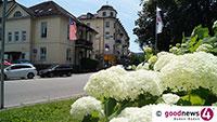 Blumenmeer in den Startlöchern – Neugestaltung Staudenbeet an der Luisenstraße