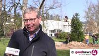 """Ein Mammutbaum-Baby in der Lichtentaler Allee – Markus Brunsing: """"Der erstmal um sein Überleben kämpfen muss"""""""