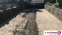 Niedrigwasserstände Belastung für Tiere und Pflanzen – Rathaus appelliert an Gartenbesitzer