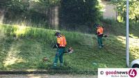 Mäharbeiten zwischen Balg und Haueneberstein – Herrenpfädel am Samstag gesperrt