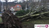 """Minister Peter Hauck verspricht Hilfe – """"Sturmtief Sabine hat die Wälder im Land spürbar getroffen"""""""