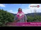 Forstamtschef Thomas Hauck zu Lieblingsstellen und Problemen im Baden-Badener Wald