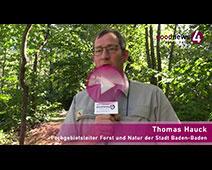 """Forstamtsleiter Thomas Hauck zu Dürre, Borkenkäfern und """"riesigen, wilden Partys"""""""