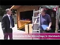 Größtes Reblandfest in Steinbach