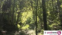 Stetig steigende Waldbrandgefahr – Polizei bittet Waldbesucher um besonders erhöhte Vorsicht und Aufmerksamkeit