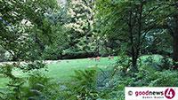 Auch Gernsbacher Rathaus mit Bitte an Hundebesitzer – Gefahr von Hetzjagden – Hunde bitte auch im Wald an die Leine nehmen