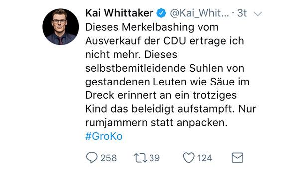 """Wie Säue im Dreck"" - Baden-Badener CDU-Bundestagsabgeordnete beschimpft Merkel-Kritiker"