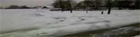 Die Baden-Baden Grünen haben kalten Winter im Sinn – Werner Hirth sagt Regelung für Schneeräumung vor Rheintalhalle in Sandweiher zu