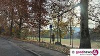 Wörthböschelpark in Oos soll wachsen – Bewilligungszeitraum für Sanierungsgebiet bis 2020 verlängert